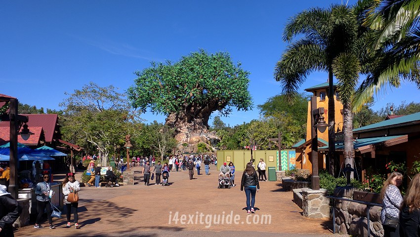 Disney's Animal Kingdom | RoadGuides.com